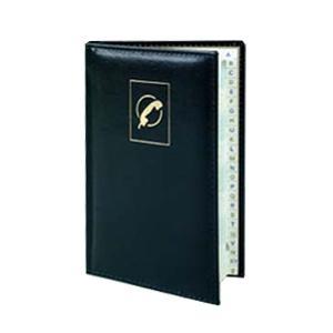 Telefonu un adrešu grāmata AURORA A6/64 lap. līniju
