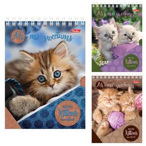 Bloknots A6/40 lapas rūtiņu ar spirāli Cats