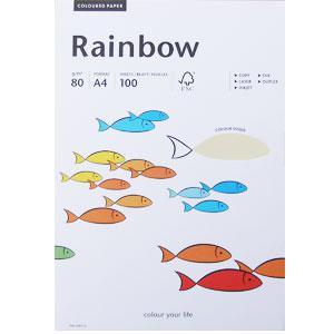 *Krāsains papīrs Rainbow 93 gaiši pelēka A4 100loksnes,  80g/